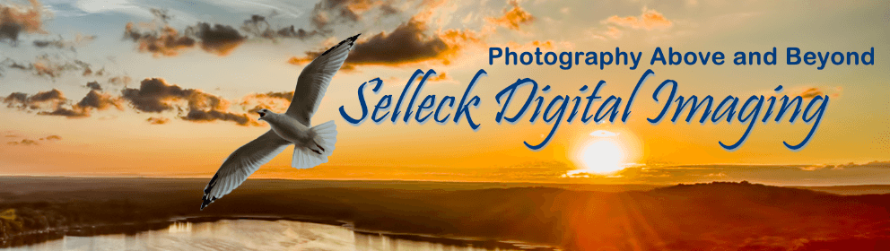 Selleck Digital Imaging - Photography Above and Beyond